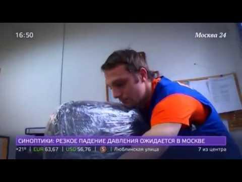 «Вы бы пошли в грузчики?», сюжет на телеканале «Москва 24»