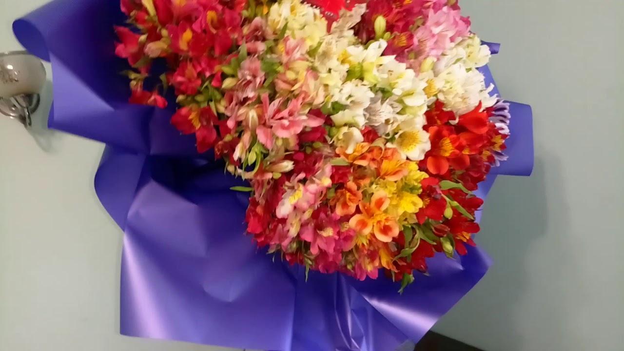 101 АЛЬСТРОМЕРИЯ КУПИТЬ | Привезем сегодня | Закажите доставку цветов | Лидер доставки цветов