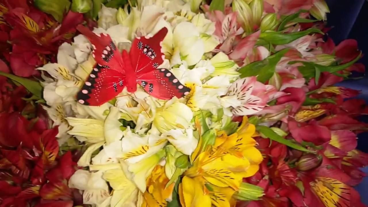 КУПИТЬ АЛЬСТРОМЕРИИ | Привезем сегодня | Закажите доставку цветов | Лидер доставки цветов